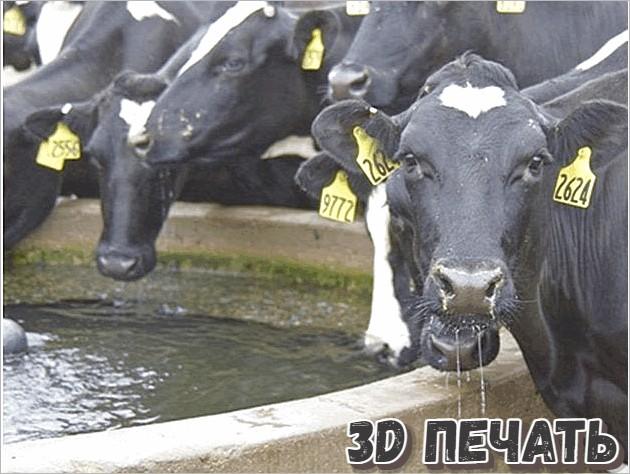 Кормушки для коров