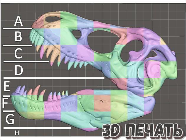 3D модель T-Rex - настенная вешалка в натуральную величину