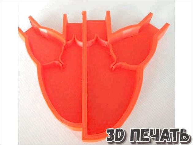 Модель сердца для обучения