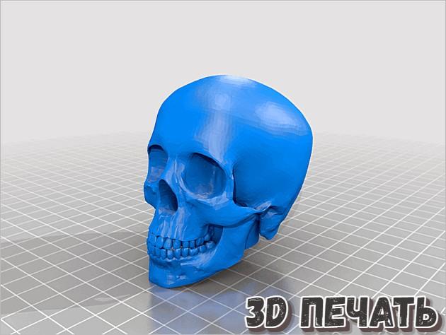 человеческий череп на посох